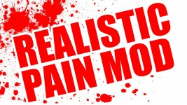 Realistic Pain Mod
